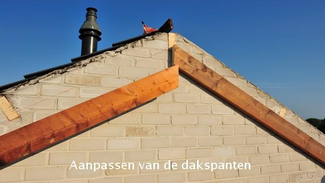 65 woningen Nederlandse buurt dakspanten